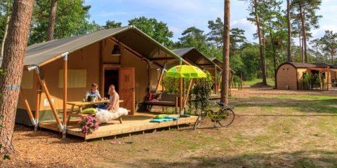 5-sterren-anwb-camping-10