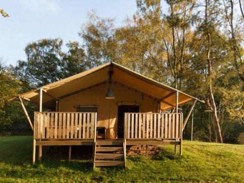 safari-resort-beekse-bergen-noord-brabant-14