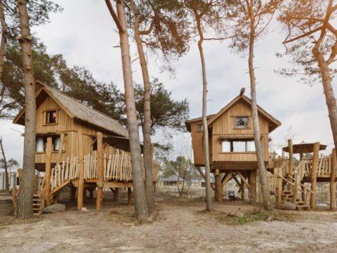 safari-resort-beekse-bergen-noord-brabant-3