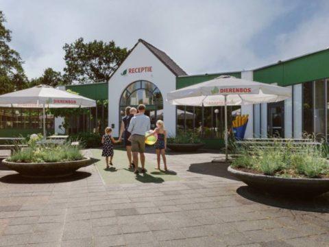 vakantiepark-dierenbos-in-noord-brabant-9