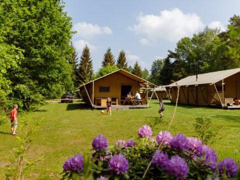 4-sterren-camping-nederland-20