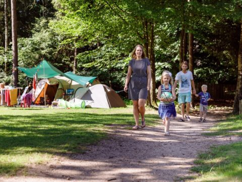 4-sterren-camping-nederland-6
