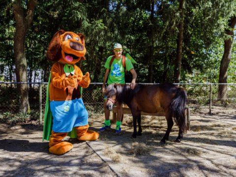 rcn-de-noordster-4-sterren-camping-nederland-6