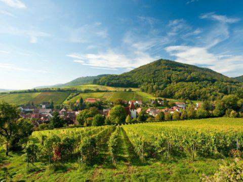 vakantiepark-hambachtal-duitsland-6