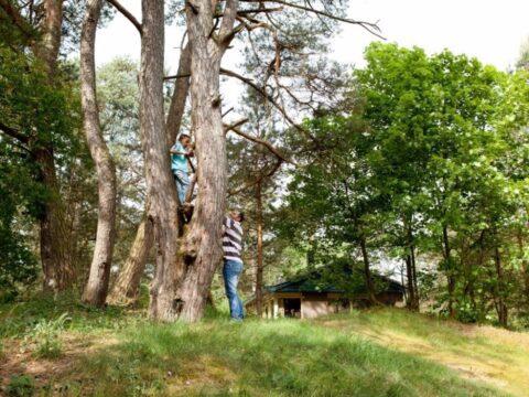 camping-op-de-veluwe-1