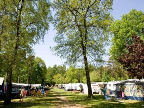 de-heldense-bossen-5-sterren-camping-5