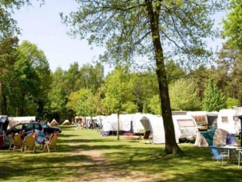 de-heldense-bossen-5-sterren-camping-6