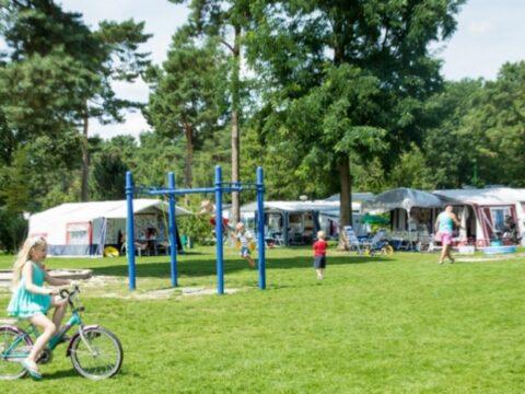 de-heldense-bossen-5-sterren-camping-7