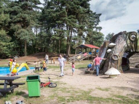 de-heldense-bossen-5-sterren-camping-8