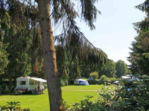 t-schuttenbelt-4-sterren-camping-overijssel-12