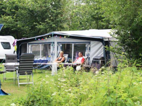 camping-rondeweibos-in-zeeland-nederland-3